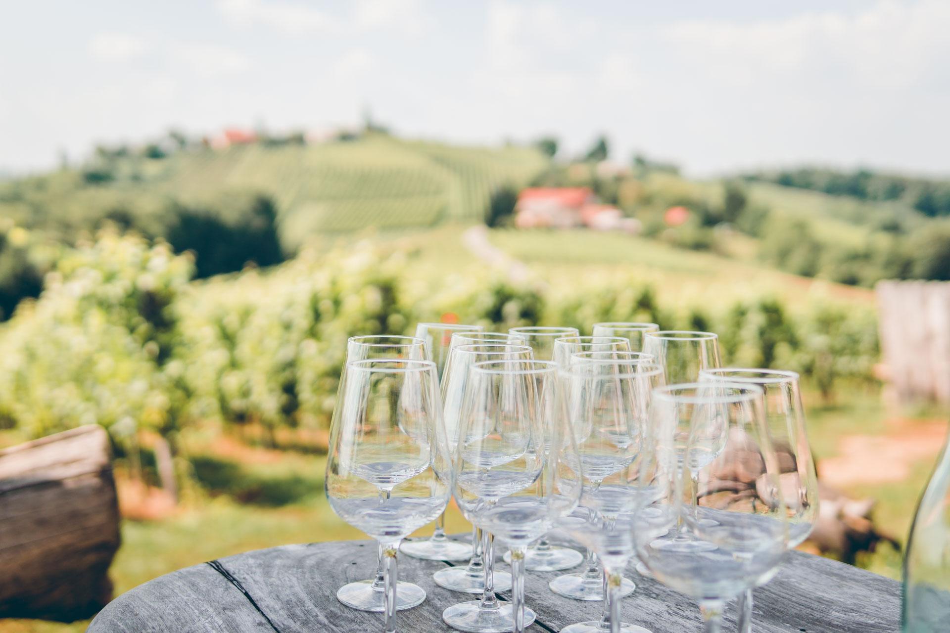 Detailaufnahme von Weingläsern vor den slowensichen Weinbergen